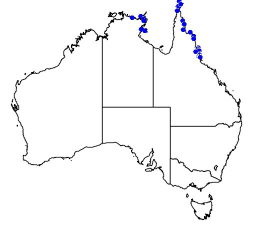 distribution map showing range of Arenga australasica in Australia
