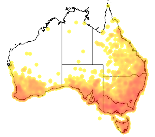 distribution map showing range of Artamus cyanopterus in Australia
