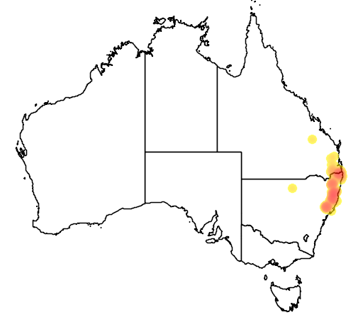 distribution map showing range of Atrichornis rufescens in Australia