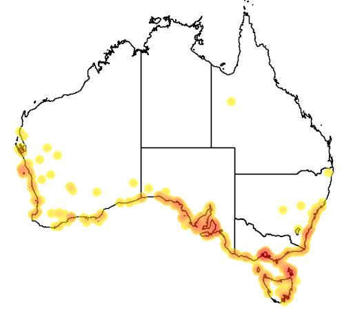 distribution map showing range of Atriplex cinerea in Australia