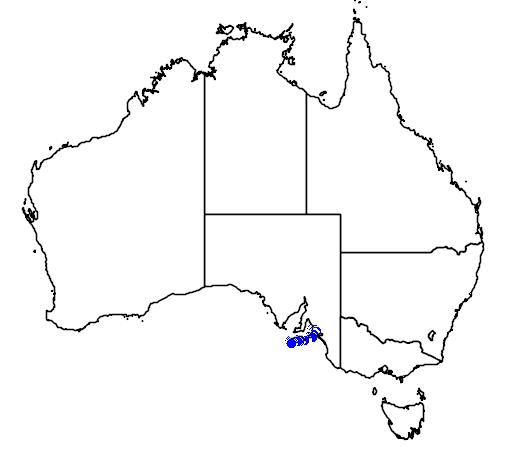 distribution map showing range of Austrelaps labialis in Australia