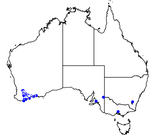 distribution map showing range of Banksia baueri in Australia