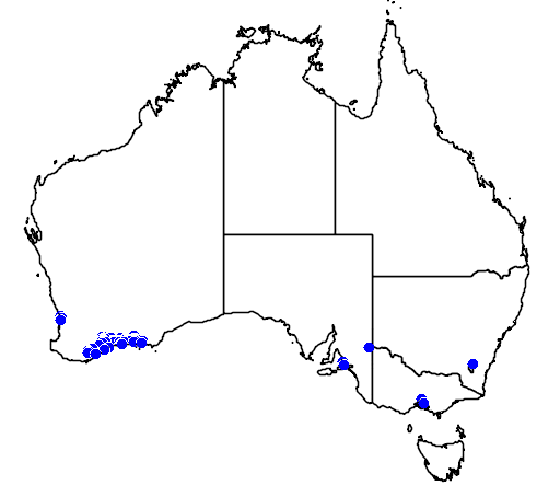 distribution map showing range of Banksia blechnifolia in Australia