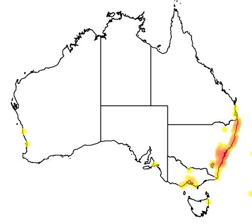 distribution map showing range of Banksia ericifolia in Australia