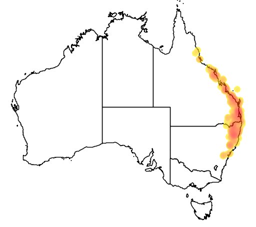 distribution map showing range of Banksia integrifolia in Australia