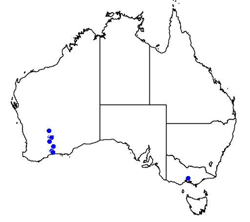 distribution map showing range of Banksia lullfitzii in Australia
