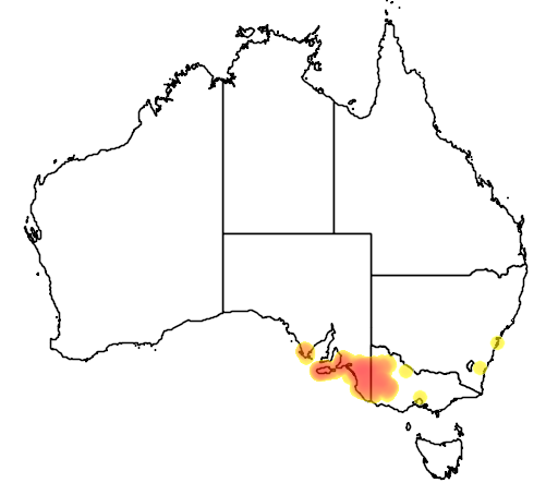 distribution map showing range of Banksia ornata in Australia