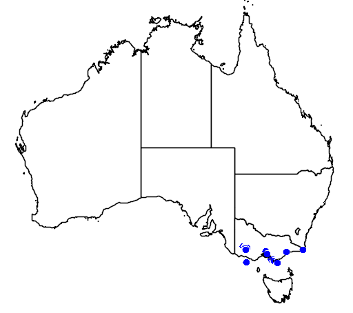 distribution map showing range of Banksia saxicola in Australia