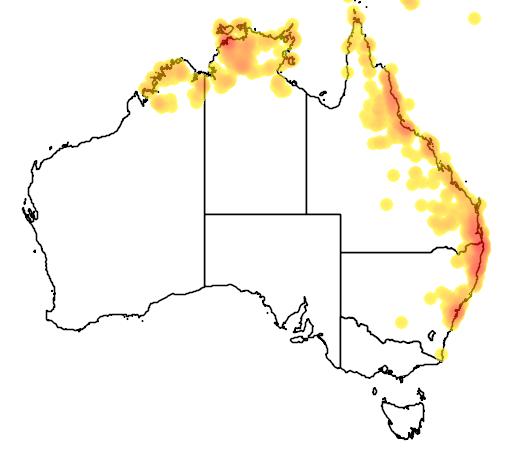 distribution map showing range of Boiga irregularis in Australia