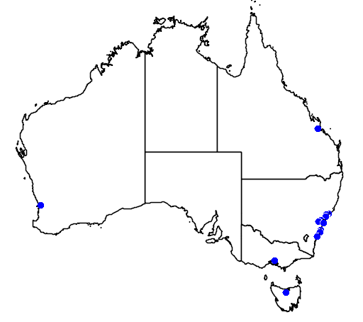 distribution map showing range of Branta canadensis in Australia