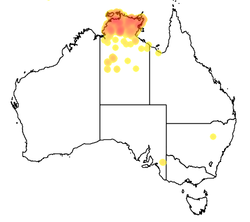 distribution map showing range of Bubalus bubalus in Australia