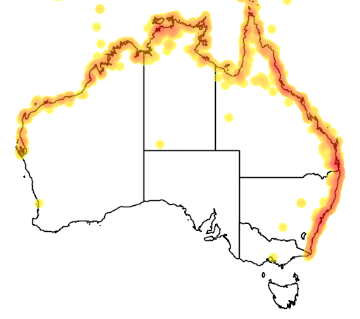 distribution map showing range of Butorides striatus in Australia