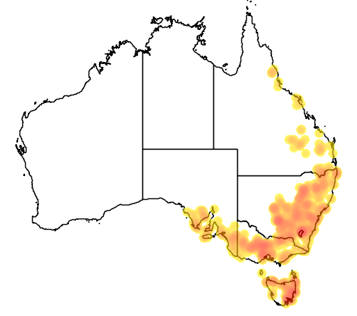 distribution map showing range of Caladenia fuscata in Australia