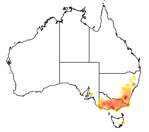 distribution map showing range of Caladenia moschata in Australia