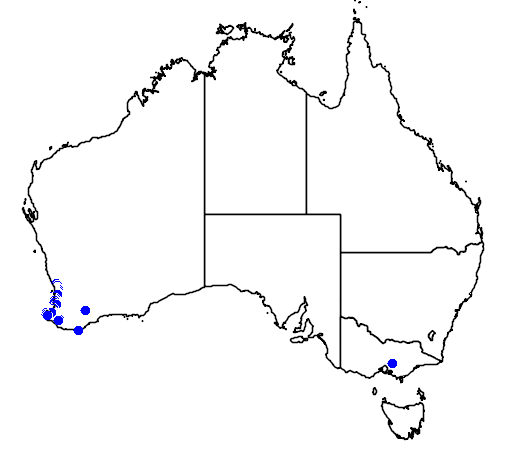 distribution map showing range of Caladenia paludosa in Australia