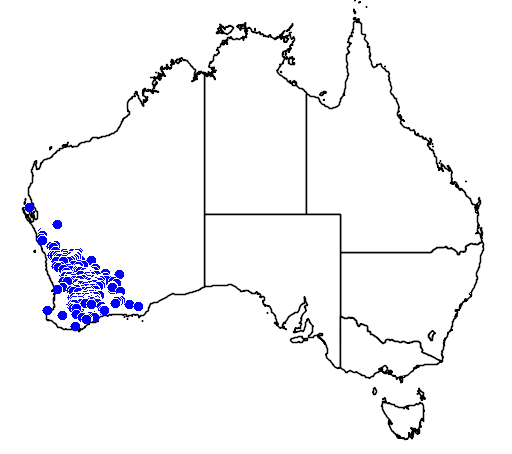distribution map showing range of Caladenia roei in Australia
