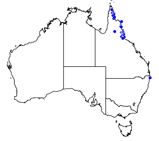 distribution map showing range of Calamus caryotoides in Australia