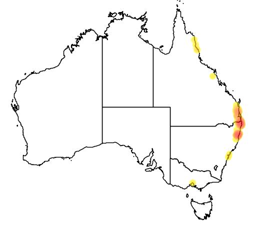 distribution map showing range of Calamus muelleri in Australia