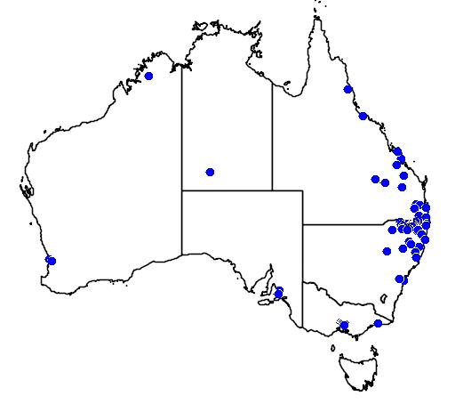 distribution map showing range of Callistemon viminalis in Australia