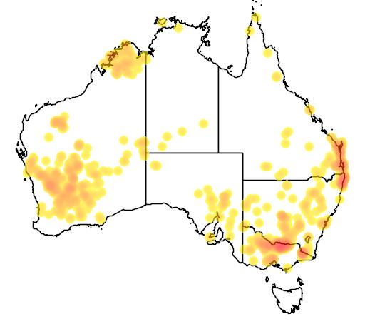 distribution map showing range of Callitris columellaris in Australia