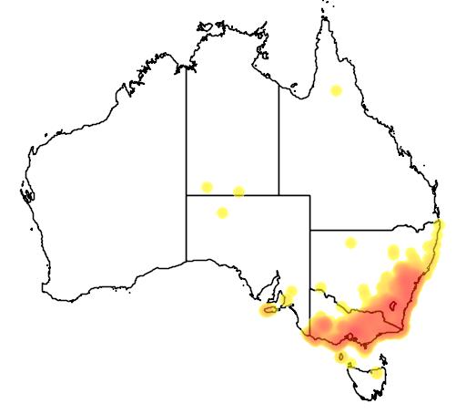 distribution map showing range of Callocephalon fimbriatum in Australia