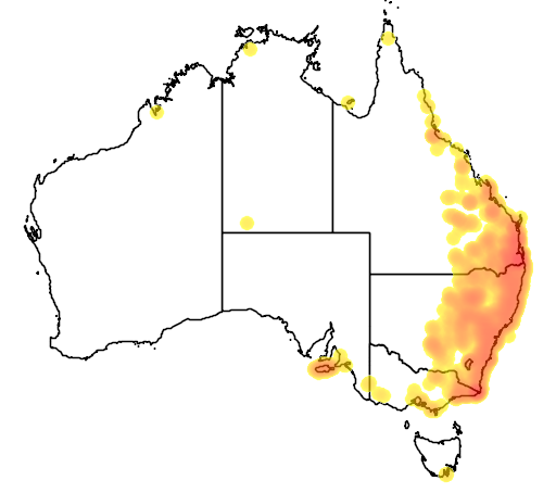 distribution map showing range of Calyptorhynchus lathami in Australia