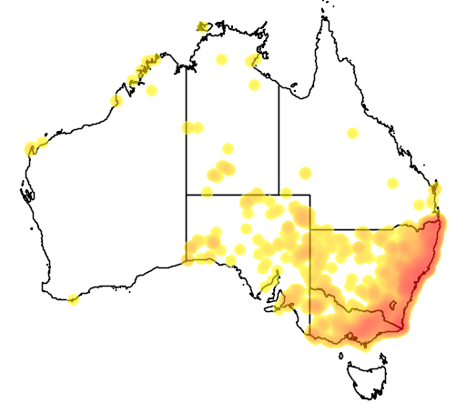 distribution map showing range of Canis lupus in Australia