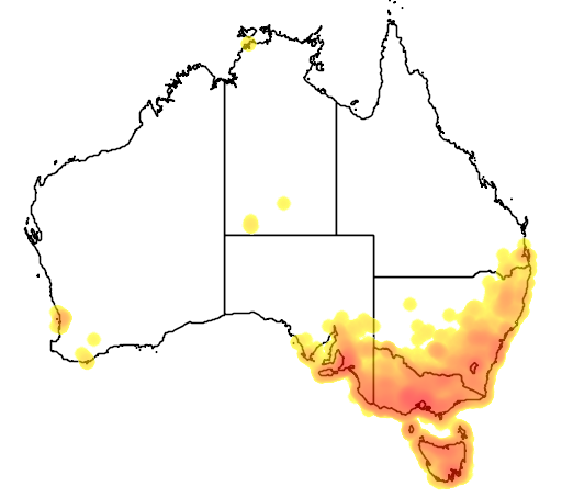distribution map showing range of Carduelis carduelis in Australia