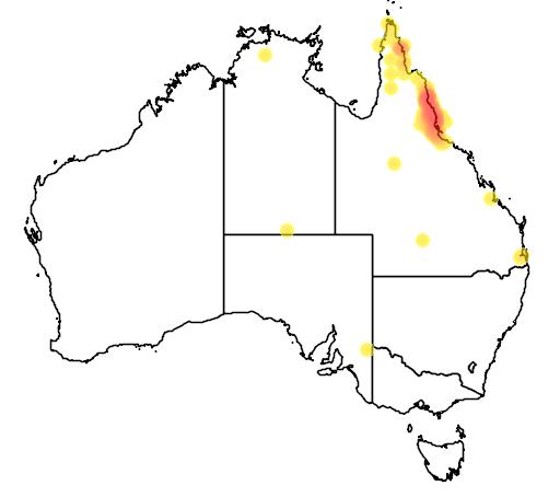 distribution map showing range of Casuarius casuarius in Australia