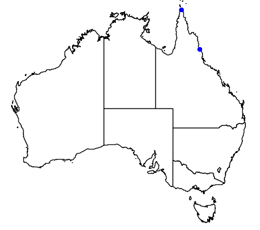 distribution map showing range of Cepobaculum semifuscum in Australia
