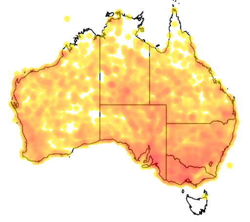 distribution map showing range of Cincloramphus cruralis in Australia