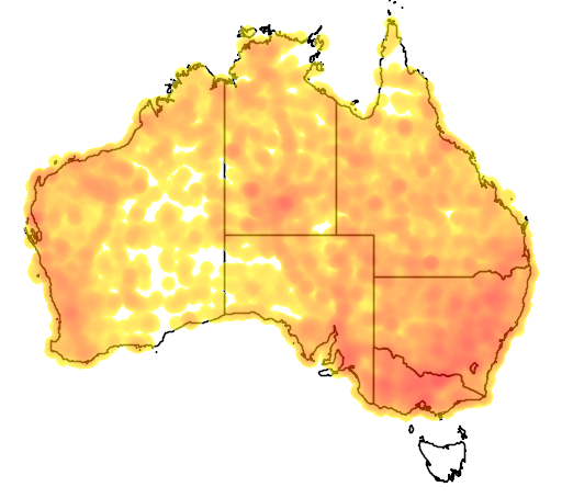 distribution map showing range of Cincloramphus mathewsi in Australia