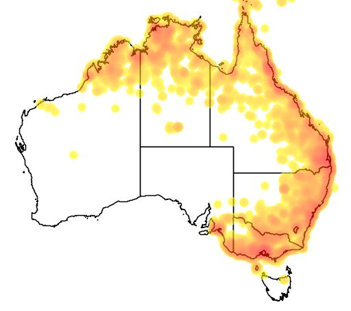distribution map showing range of Cisticola exilis in Australia