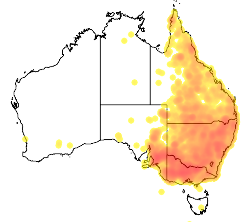 distribution map showing range of Climacteris picumnus in Australia