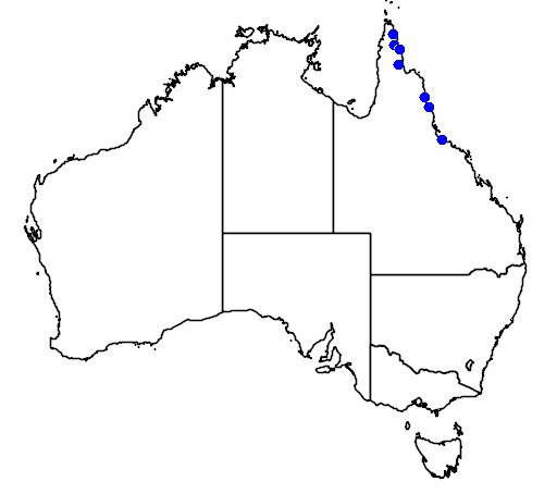 distribution map showing range of Coelandria smillieae in Australia