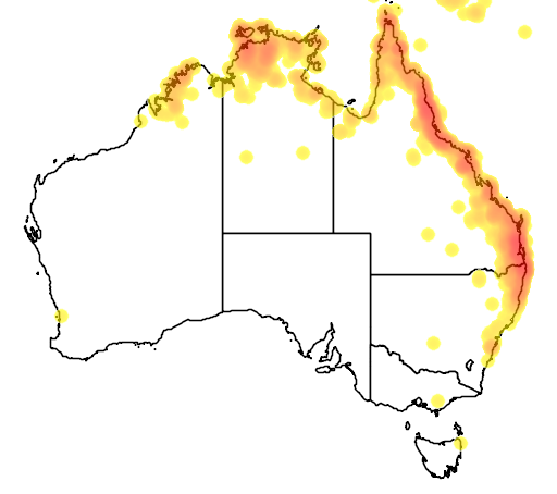distribution map showing range of Colluricincla megarhyncha in Australia