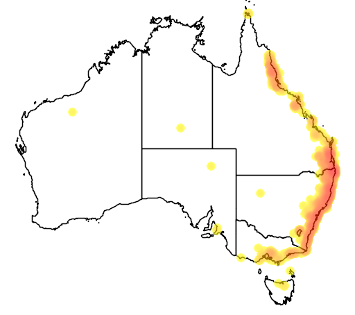 distribution map showing range of Columba leucomela in Australia