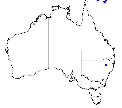 distribution map showing range of Columba vitiensis in Australia
