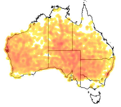 distribution map showing range of Corvus bennetti in Australia