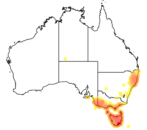 distribution map showing range of Corvus tasmanicus in Australia