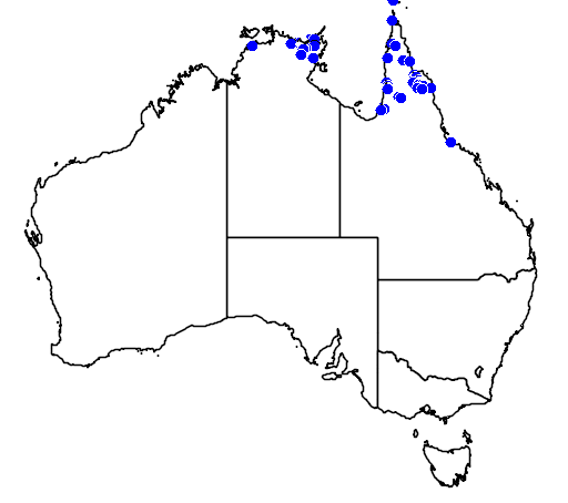 distribution map showing range of Corypha utan in Australia