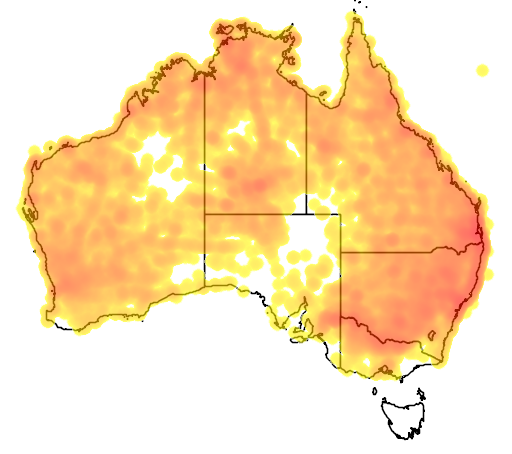distribution map showing range of Cracticus nigrogularis in Australia
