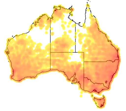 distribution map showing range of Cracticus torquatus in Australia