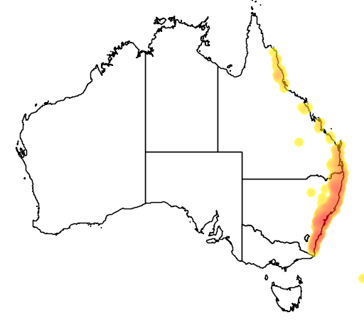 distribution map showing range of Cymbidium suave in Australia