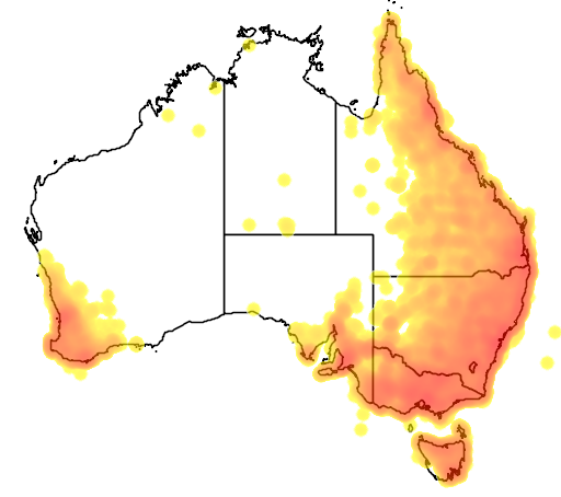 distribution map showing range of Dacelo novaeguineae in Australia