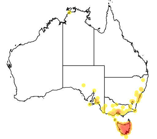 distribution map showing range of Dasyurus viverrinus in Australia