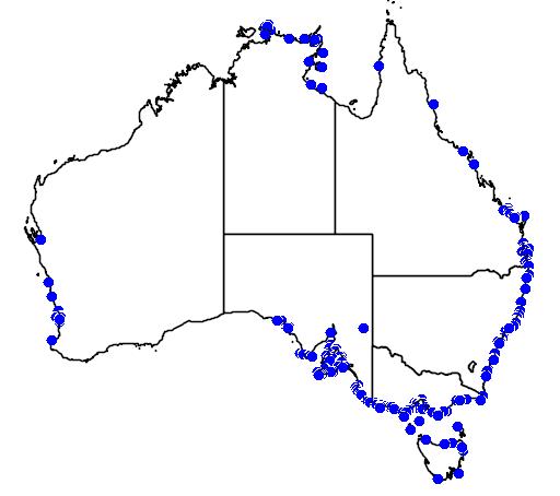 distribution map showing range of Dermochelys coriacea in Australia