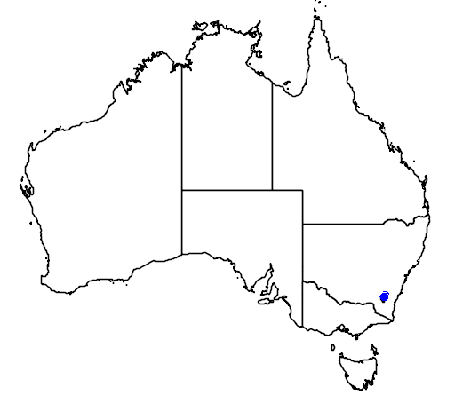 distribution map showing range of Diuris nigromontana in Australia