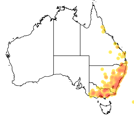 distribution map showing range of Diuris punctata in Australia