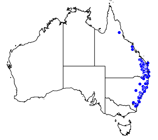distribution map showing range of Dockrillia linguiformis in Australia